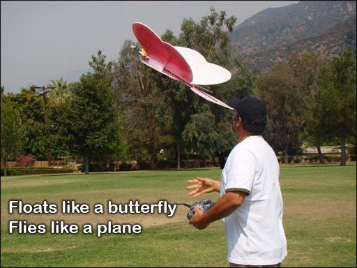 butterfly-rcplane
